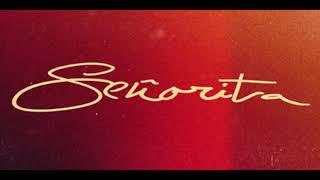Shawn Mendes -  Señorita (Official Solo Version)