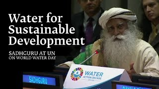 Sadhguru at UN on World Water Day – Water for Sustainable Development