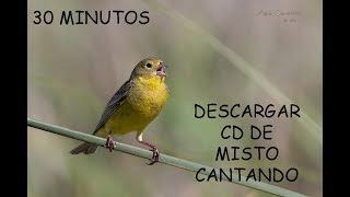 Descargar CD De Misto Cantando
