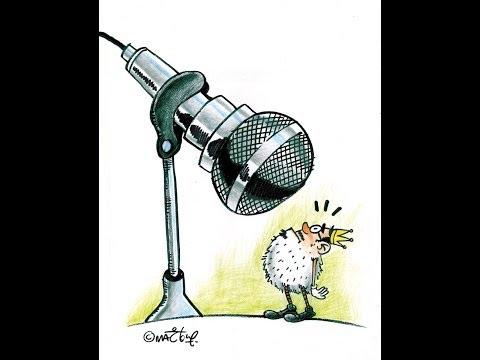 مرسي رئيسي.. حصاد ٢٠١٣ بالكاريكاتير - الجزء الأول