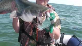 Рыбалка на цимлянск водохранилище