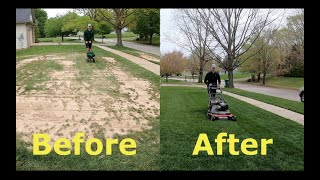 Step by Step Guide to OVERSEEDING (Better looking lawn FAST)