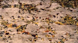 1800getarug.com | Modern & Contemporary Rugs
