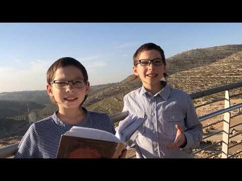 Trumá – Saul és Joel tóramagyarázatai