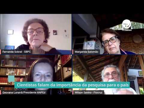 Cientistas falam da importância da pesquisa para o país - 25/06/20
