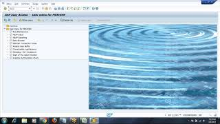 Day 14 -  Implementation Phase of SAP Security