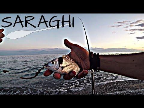 La caccia di canale TV e la pesca per scaricare