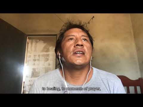 #34bienal (Interview) Jaider Esbell