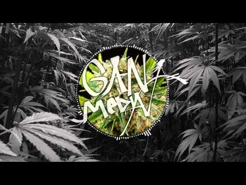 Damian Marley - Welcome To Jamrock (GRiZ Remix)