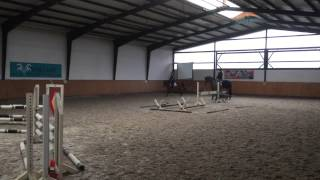 Chiara Hunter Pony