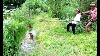 Amazing Fishing Trap By Babe Duck-Catch Mud Fishing By Babe Duck In Cambodia