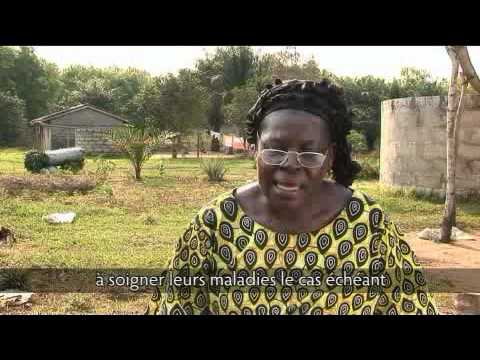 Mampu.  L'agroforesterie, une différence durable