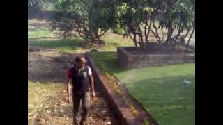 preview picture of video 'Sprinkler Irrigation by Rachana Nursery'