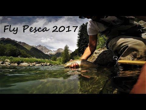 Fly Pesca 2017