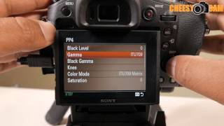 How to Find SLOG in Sony Cameras RX10MKII A7s A7RII