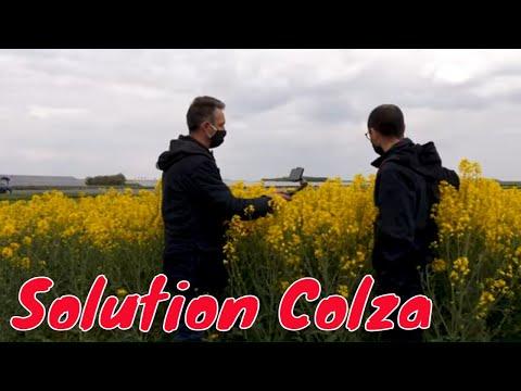 Comment réussir mes semis de Colza ? Solution Colza Comment réussir mes semis de Colza ? Solution Colza