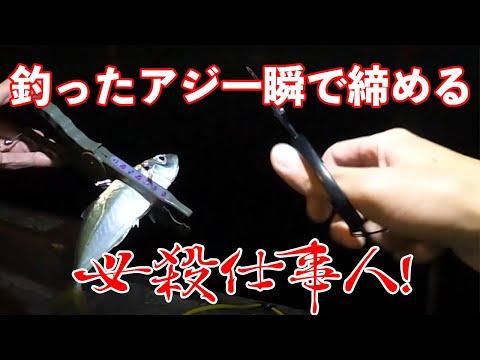 , title : '【アジング】釣ったアジを簡単に秒で締める・血抜きする方法