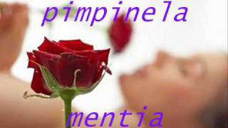 Pimpinela   Mentia.wmv