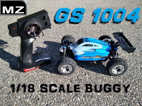 MZ GS1004 RC BUGGY REVIEW