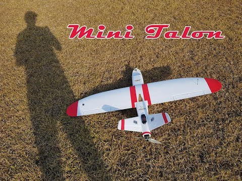 mini-talon-build-and-maiden--fpv-plane