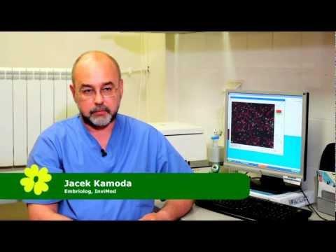 Antybiotyki do leczenia przewlekłego leczenia bakteryjnego zapalenia gruczołu krokowego