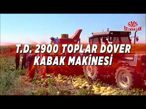 T.D. 2900 Pumpkin Seed Extracting Machine