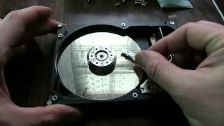 А что внутри :)  HDD разбираем жесткий диск. Любопытно