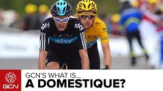 What Is A Domestique? How Do Teams Use Their Riders?