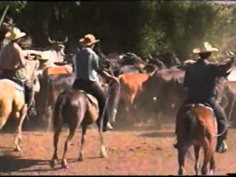 Comunidad de vaqueros. Trabajo de campo