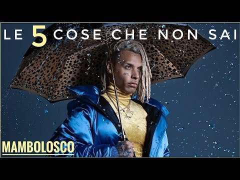 5 COSE CHE NON SAI SU MAMBOLOSCO | ARTE