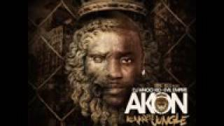 Akon - Call Da Police feat Busta Rhymes (Konkrete Jungle).mp4