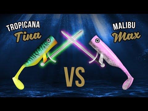 TINA vs MAX - Wer fängt mehr Zentimeter? | hechtundbarsch.de