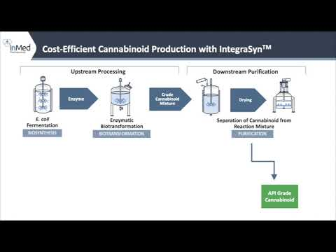 Discover How InMed's IntegraSyn™ Cannabinoid Manufacturing Process Works