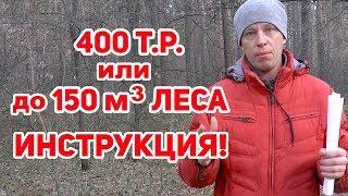 50 кубов леса БЕСПЛАТНО # Как недорого ПОСТРОИТЬ ДОМ?!