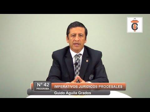 Imperativos Jurídicos Procesales - Guido Aguila Grados Tribuna Constitucional 42