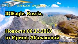 IDIEagle Russia. Новости от Ирины Абалаковой 06.12.2018