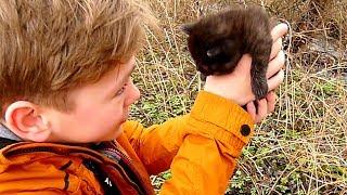 Коля находит ЗАМЁРШЕГО  ПОЛУЖИВОГО Котёнка. Но ЗАХОЧЕТ  ли Никиса стать МАМОЙ для малыша?