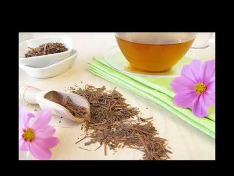 30 Tage Lapacho Tee trinken und 10 Jahre juneger aussehen