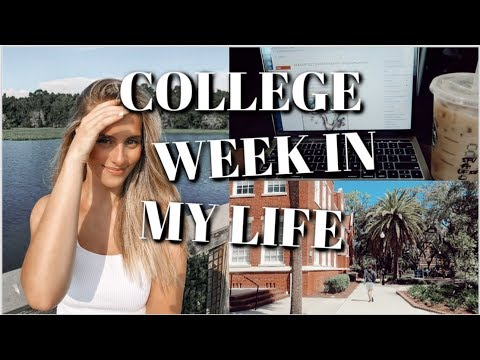 college week in my life @ uf: first week of classes!