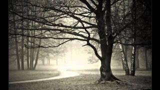 Dishwalla - Until I Wake Up (With Lyrics)