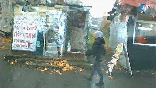 В Великом Новгороде ищут воришку сетки-рабицы