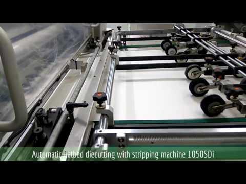 Automatic Die Cutter Stripper Machine
