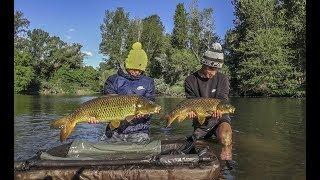Pêche De La Carpe En Rivière Sauvage