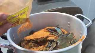 How to Steam Blue Crabs Maryland Style