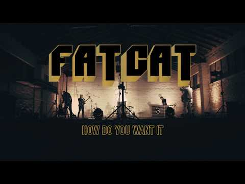 Fatcat Video