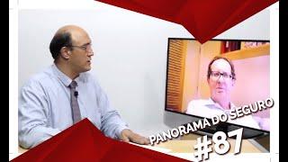PANORAMA DO SEGURO FAZ ANÁLISE GEOGRÁFICA DOS MERCADOS BRASILEIRO E EUROPEU