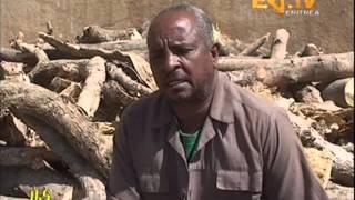 Eritrean Tigrinya News  2 May 2013 - Eritrea TV - EriTV Zena