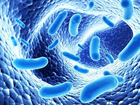 Human papilloma dapat menyebabkan penyakit