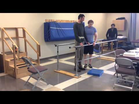 Static and Dynamic Balance Interventions
