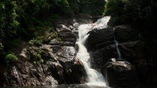 Sound of Rocky Stream